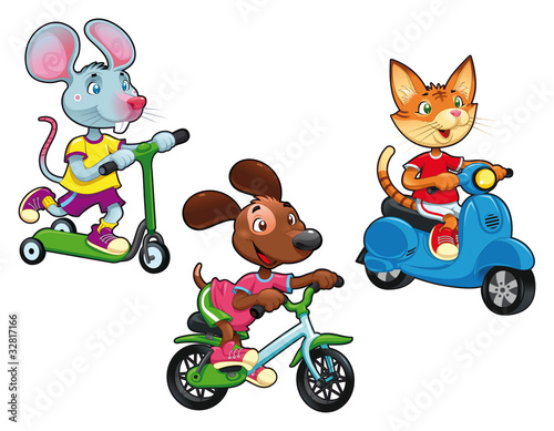 Wall Mural - Animals on vehicles. Vector isolated characters.