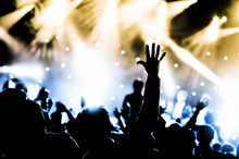 Wall Mural - crowd with hands raised at a live music concert