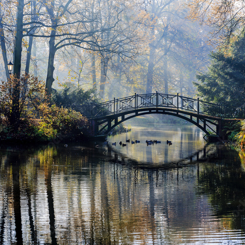 Wall Mural - Autumn - Old bridge in autumn misty park