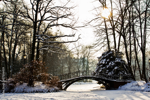 Wall Mural - Winter scene - Old bridge in winter snowy park