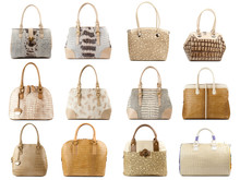 Wall Mural - Handbags collection isolated on white background.Front view.